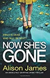 Now She's Gone: An absolutely gripping crime thriller: Volume 2 (Detective Rachel Prince)
