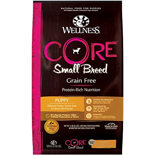 (Wellness Core Natural Grain Free Dry Puppy Food, Small Breed Puppy, 12-Pound Bag )