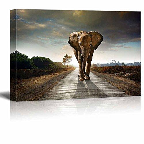 Large Elephant Walking Behind a Dark Cloudy Sky Wall Decor ation