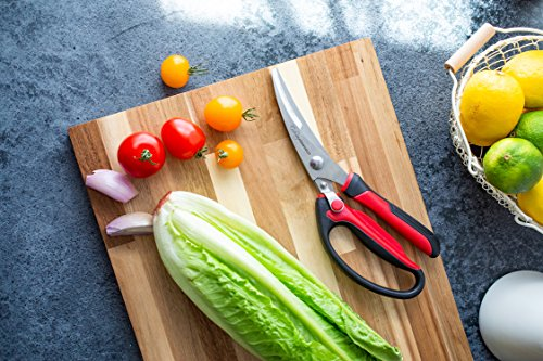 Heavy Duty Kitchen Scissors | Dishwasher Safe Stainless Steel | MultiPurpose Professional Grade Poultry Shears - Great for Cutting Meat, Chicken, Bone, Fish, Game, Floral Arrangements and Other Food by Culinary Obsession (Image #8)