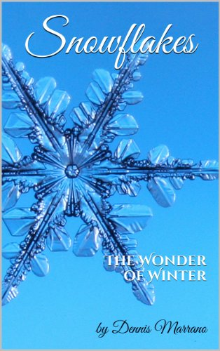 Winter Wonder Snowflake - 1
