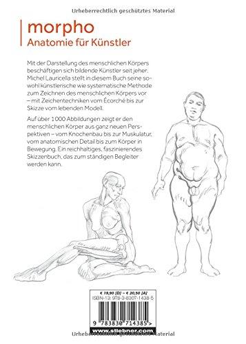 Morpho: Anatomie für Künstler: Amazon.de: Michel Lauricella: Bücher