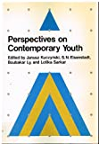 img - for Perspectives on Contemporary Youth book / textbook / text book