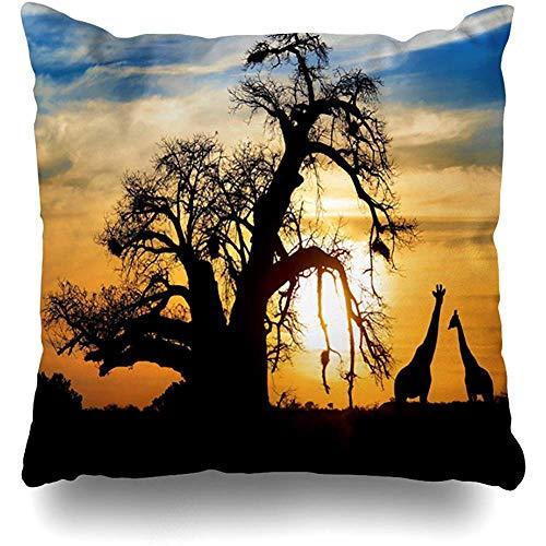 Staromia Decorative Throw Pillow Cushion Cover 18