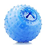SHENNOSI Puppy Chew Toy Arctic Freeze Fetch Food Cooling Clean Teeth Rubber Dog Supplies Water Play (Ball)