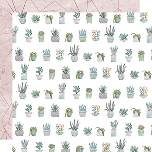 Kaisercraft Greenhouse Double-Sided Cardstock 12