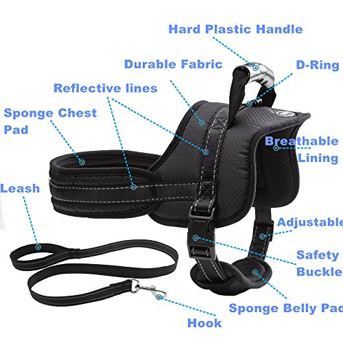 Mihachi Dog Harness with Leash with Handle No Pull No Chock Adjustable Padded Vest Harness for Dogs,Black,L by Mihachi (Image #2)