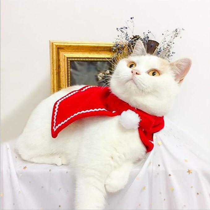 Amazon.com: Adorable gato perro disfraz de ropa, capa de ...