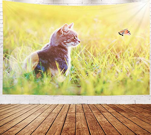 Yecationy Beach Tapestry, Tapestry Psychedelic Tapestry 80x60 Inch Beautiful Striped Cat in The Green Grass Sunny Meadow Summer Looking Tapestry Wall Hanging Living Room Decoration -