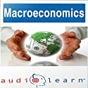 Macroeconomics AudioLearn Follow Along Manual: AudioLearn Economics Series Audiobook by  AudioLearn Editors Narrated by  AudioLearn Voice Over Team