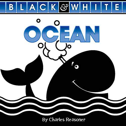 Ocean (Black And White)