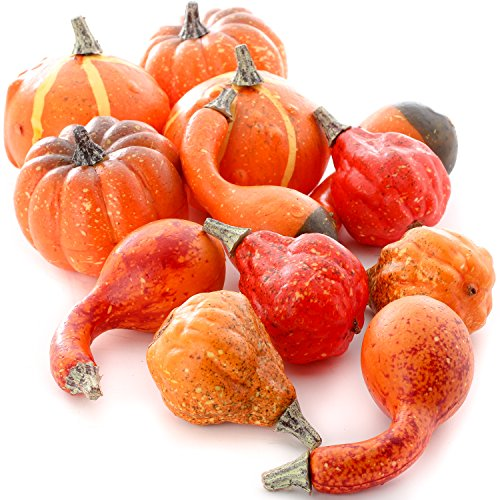 Factory Direct Craft 12 Assorted Harvest Red and Orange Artificial Pumpkins and Gourds]()