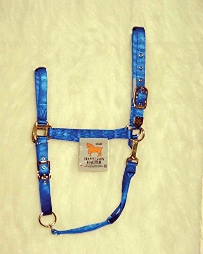 HAMILTON HALTER COMPANY Adjustable Chin Horse Halter with Snap Blue Extra Large - Hamilton Horses Halter