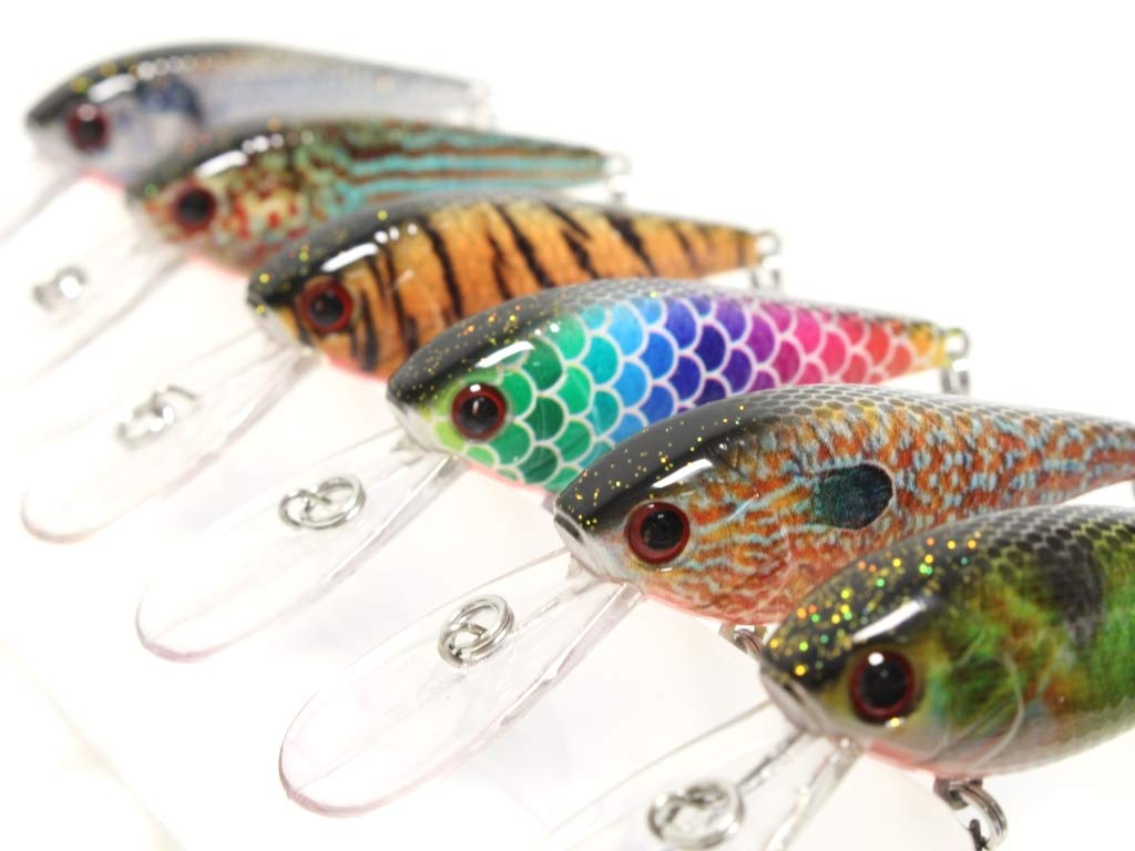 6 Hard Baits Fishing Lures in One Tackle Box Deep Water Crankbait RealSkin Painting for Bass Fishing HC549KB by wLure