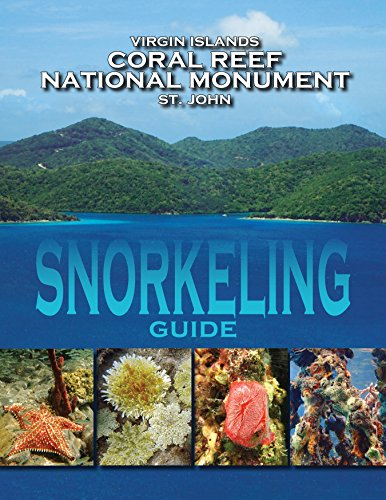 Virgin Islands Coral Reef National Monument St. John - Snorkeling - Bay Beaches Caneel