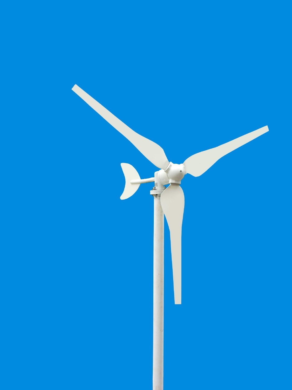 Higoo 100W Two-phase DC12-Volt Hyacinth Wind Turbine tm Residencial Wind Generator 3-Blade Kit