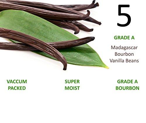 5 - Madagascar Bourbon Vanilla Beans (Vanilla Planifolia) SUPER MOIST & FRESH 33% Moisture Content - 5-6 ()