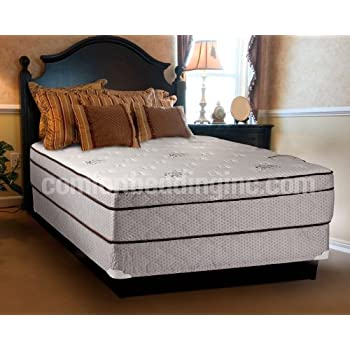 Dreamy Rest Pillow Top (Euro Top) Queen Size Mattress and Box Spring Set  sc 1 st  Amazon.com : box spring queen size - Aboutintivar.Com