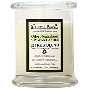 Aroma Paws Odor Candle, 12-Ounce, Citrus