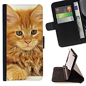 KingStore / Leather Etui en cuir / Sony Xperia Z1 L39 / Gato de Maine Coon Jengibre Naranja Garfield