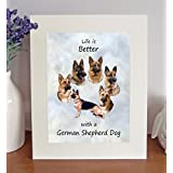 German Shepherd Dog Life is Better Free Standing 10 x 8 Picture Featuring a Selection of Breed Images - A Lovely Gift by Something Special Gift Shop