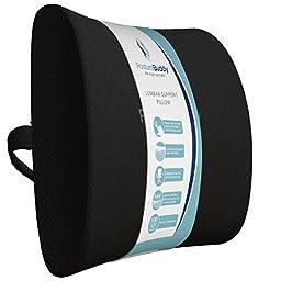 Posturebuddy 400g Memory Foam Lumbar Support Pillow