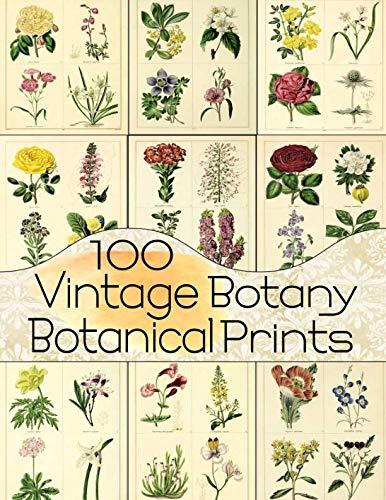 Altered Book Journal - 100 Vintage Botany Botanical Prints (Floral Ephemera Series)