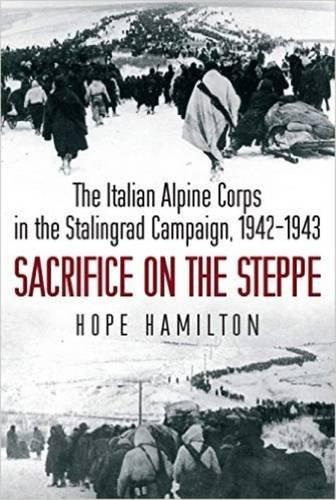 italian alpini - 1