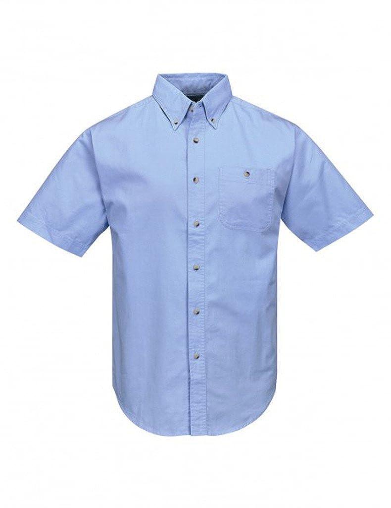 A& E Designs Premium Quality Director Short Sleeve Button Down Shirt TM808