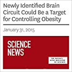 Newly Identified Brain Circuit Could Be a Target for Controlling Obesity | Ashley Yeager