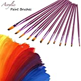 Acrylic Nylon Hair Paint Brush Set, CBTONE 12pcs