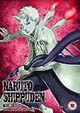 Naruto Shippuden Box 31 (Episodes 388-401) [DVD]