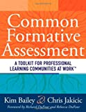 img - for Common Formative Assessment: A Toolkit for Professional Learning Communities at Work - how teams can use assessment data effectively and efficiently book / textbook / text book