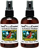 Set of 2-4-oz.-Concentrated Spray Air-Freshener/Deodorizer - Pineapple/Sage - Great for: Cars, Offices, Closets, Air-Conditioners, Pet Beds, Yoga Mats, Litter Boxes, laundry rooms & smoke odors