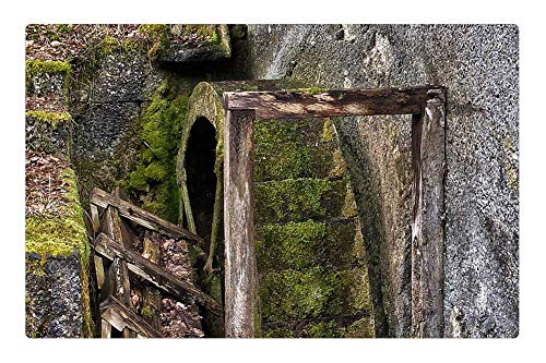 Tree26 Indoor Floor Rug/Mat (23.6 x 15.7 Inch) - Waterwheel Old Historically Woods Drive Wheel