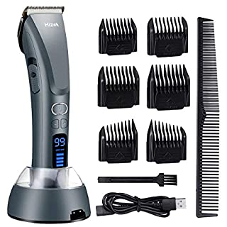 Beard and Hair Trimmer, Hizek Hair Clippers Professional Haircut Kit,Cordless Men's Trimmer with 3 Adjustable Speeds,Charging Stand, Titanium and Ceramic Blades,and 6 Guide Combs for Family Use