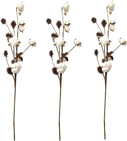 Aisamco Paquete de 3 Tallos de algodón Decoración de Granja Selecciones Florales Relleno de florero de Estilo rústico Ramas de algodón rústico 68cm por Tallo Decoración Flor: Amazon.es: Hogar