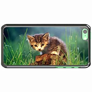 Customized Apple iPhone 5C PC Hard Case Diy Personalized DesignCover kitten stump grass White