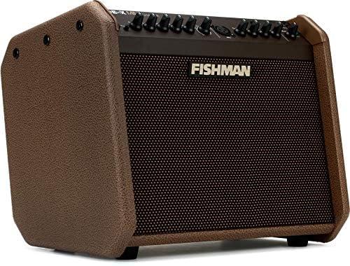 Fishman Loudbox Mini Charge 60W アコースティックギターアンプ