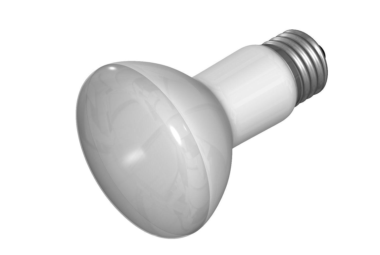 GE Lighting 14878 45-Watt Indoor Miser Indoor Floodlight, 310 Lumens, R20, 2-1/2-Inch diameter