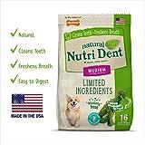 Nylabone NutriDent Natural Dental Chew Dino Shaped