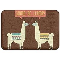 Como Se Llama Anti-skidding Outdoor Rug Standing Mat