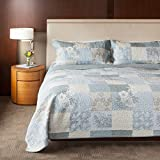 quilt cotton queen blue - SLPR Cottage Floral 3-Piece 100% Cotton Lightweight Printed Quilt Set (Queen) | with 2 Shams Machine Washable All-Season Bedspread Coverlet
