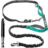Hands Free Walking Harness and Ultrasonic Training Whistle – Waist Running Dog Harness with Reflective Bungee – Can Be Used as Standard or Double Leash – Anti-Pull Leash for Men and Women