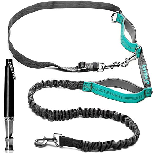 Whistle Pull (Hands Free Walking Harness and Ultrasonic Training Whistle – Waist Running Dog Harness with Reflective Bungee – Can Be Used as Standard or Double Leash – Anti-Pull Leash for Men and Women)