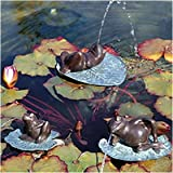 Lazy Frog Fountain Size: Small (4″H x 6.5″D x 8″W)
