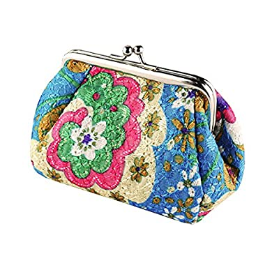 Women's Cute Embroidered Hasp Purse Clutch Bag Key Coin Card Holder Wallet (Blue) - clutches