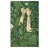 Carmen A Green Wood Head Beach Towel Soft Quick Dry Lightweight High Absorbent Pool Spa Towel for Adult 31 X 51 Inch