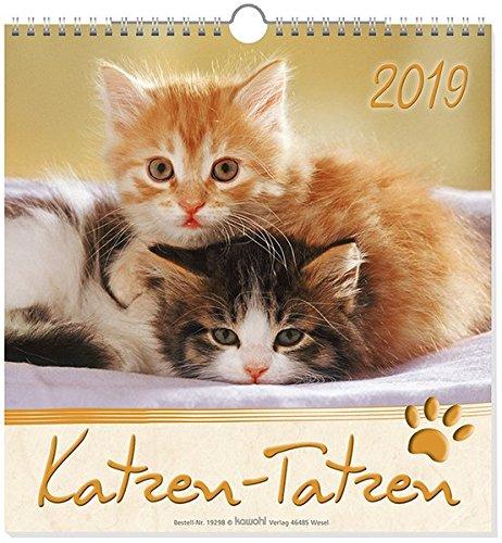 Katzen-Tatzen 2019