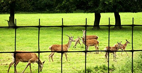 Tenax C Flex Deer Fence